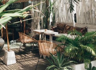 Terrasse en bois avec des plantes vertes